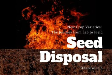 Seed disposal #LabToField