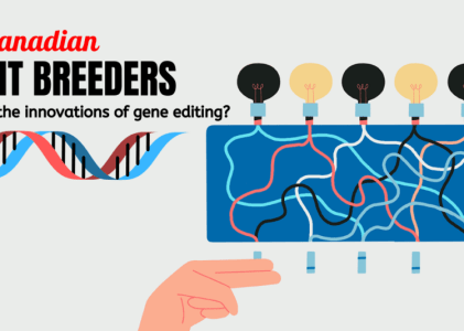 Gene Editing and Plant Breeding in Canada