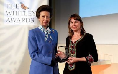 SCA's Elena Bykova presented prestigious Whitley Award for her work engaging communities in saiga conservation