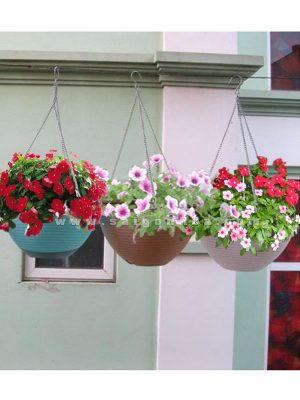 chau nhua treo moc sat trong hoa