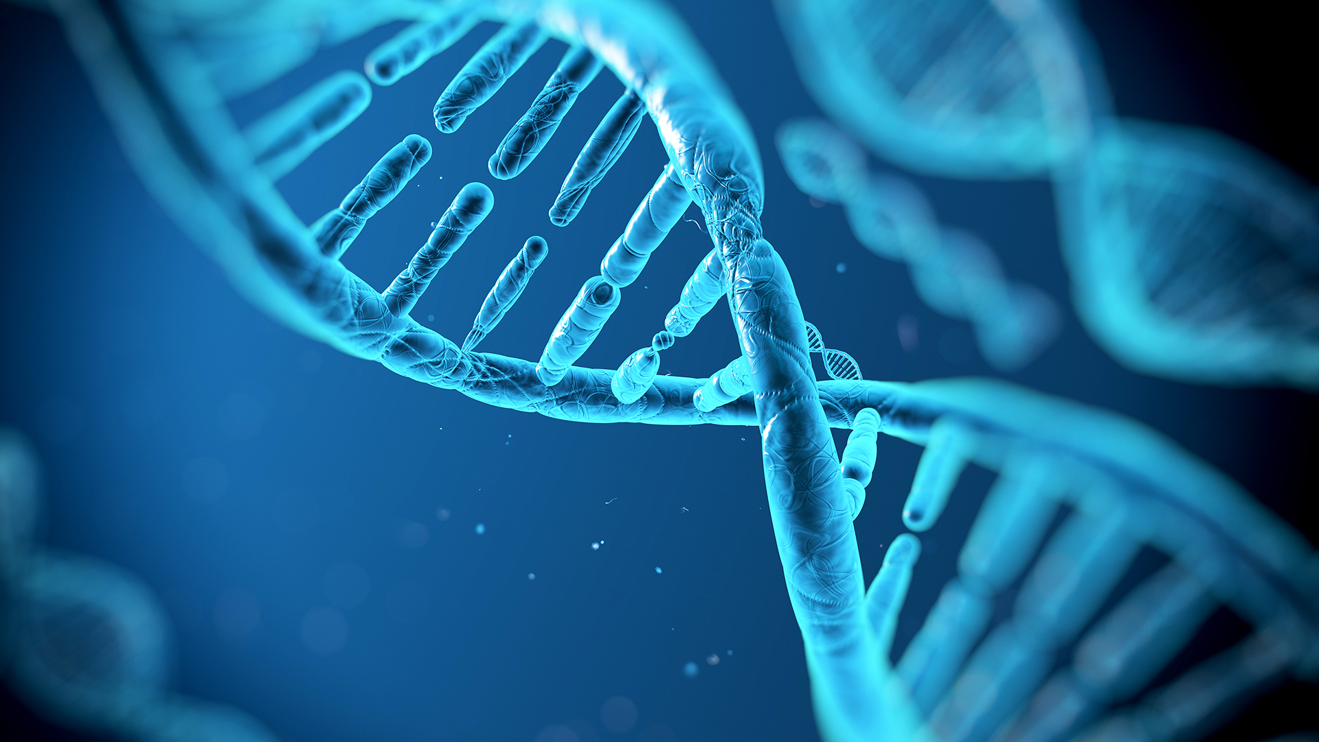 A picture of blue DNA, the most basic unit of life.