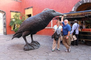 The Cuervo (raven) in Tequila