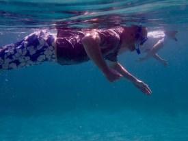 Side-by-side snorkel
