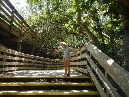 The boardwalk to John D. MacArthur State Park, a gorgeous 438-acre sanctuary just an eight-minute drive from our slip. Mangroves, estuaries, nature centers, beaches and more