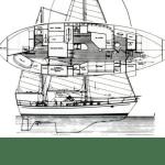 layout of Eurybia