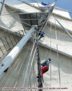 People going aloft