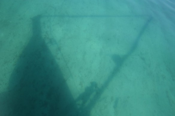 Shadow in the shallows.