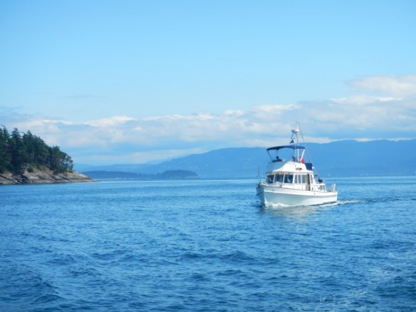 Buddy boating with Mom and Dad on their new boat, Voyager, near Cypress Island