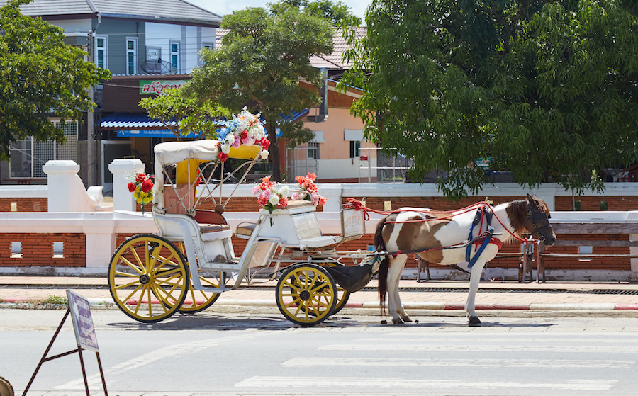 Lampang Luang Horse-Drawn Cart