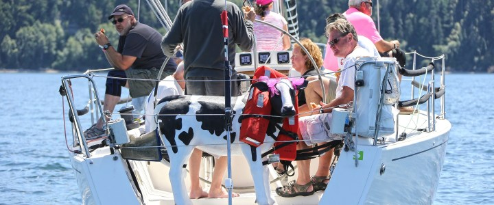 Whidbey Island Race Week 2016 Recap