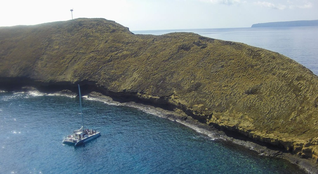 Sail Maui Featured in Washington Post!