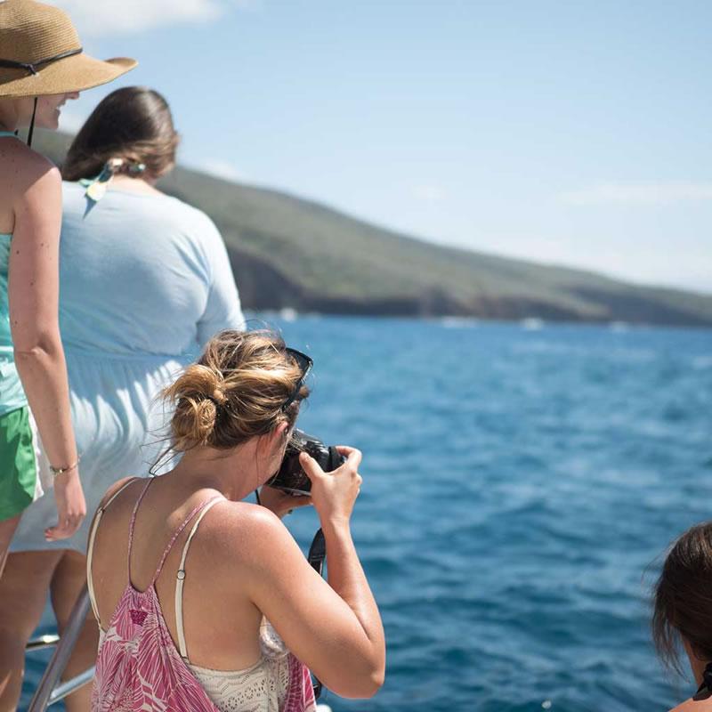 photos-on-a-whale-watching-tour-maui