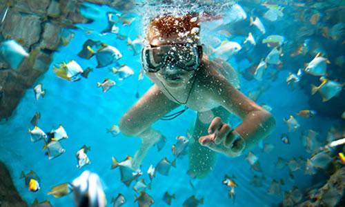 top-ten-snorkeling-spots-in-maui-1