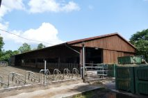 Kattendorfer Hof cow stable
