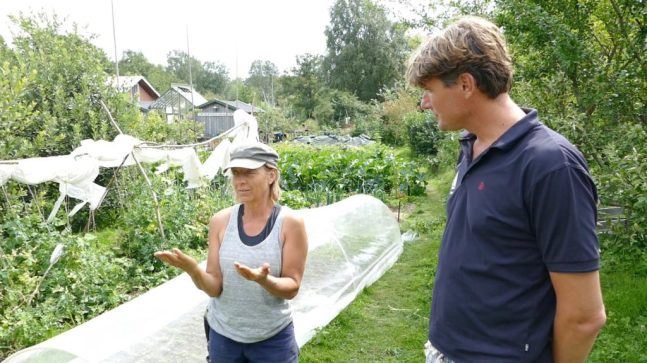Helena explains permaculture to Ivar at Kosters Tradgardar