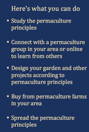 What you can do - Permaculture