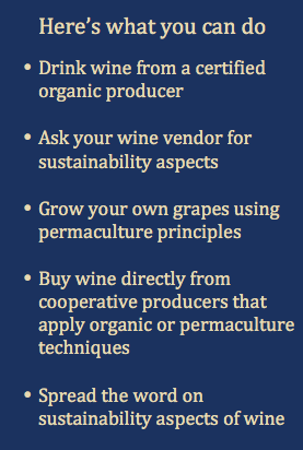 Sustainable Wine - here's what you can do