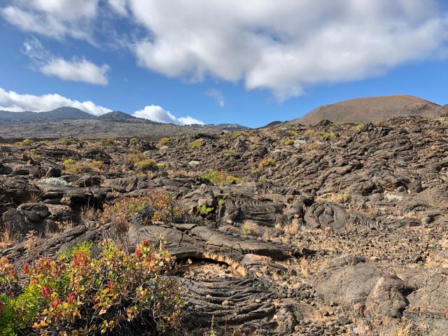 El Hierro's volcanic soil