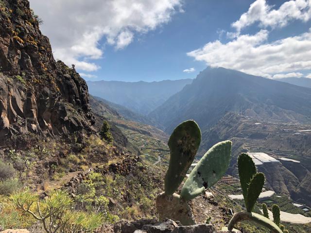 Hiking La Palma