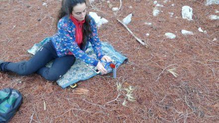 Ana sets up the bird recording equipment