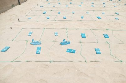 Sea turtle nests can also be adopted