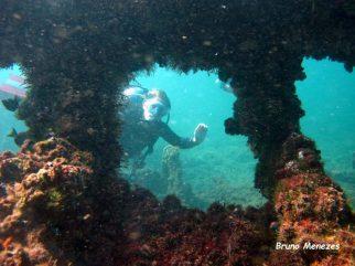 Floris at the shipwreck - picture Bruno Menezes