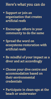 Here's what you can do - Artificial Reefs