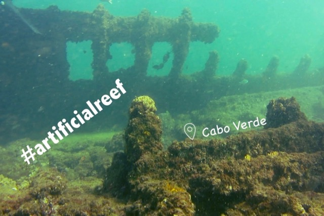Artificial Reefs (CPV)