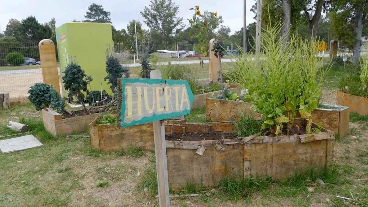 Vegetable garden in Uruguay