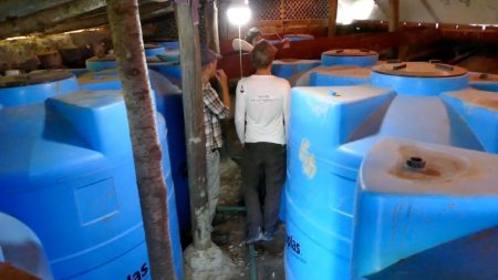 Water tanks collect the rainwater
