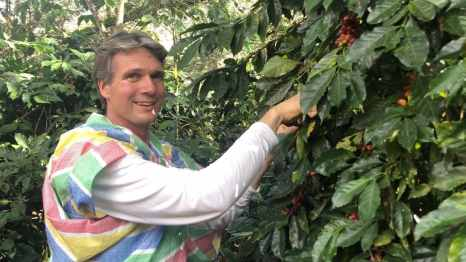 Ivar trying to only pick the red coffee beans