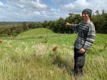 Jeroen aims to plant even more trees