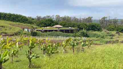 Music school Toki is an Earthship building while the surrounding lands provide organic local food