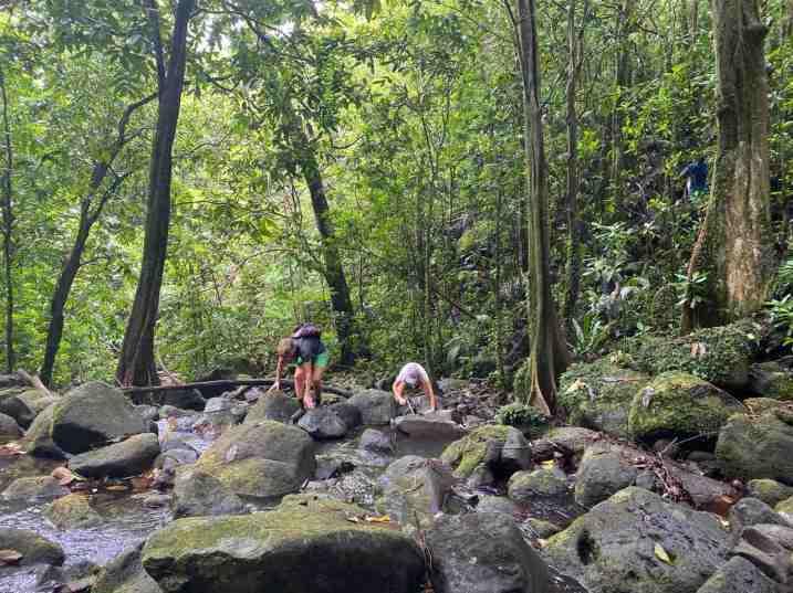Challenging hiking terrain on Raiatea