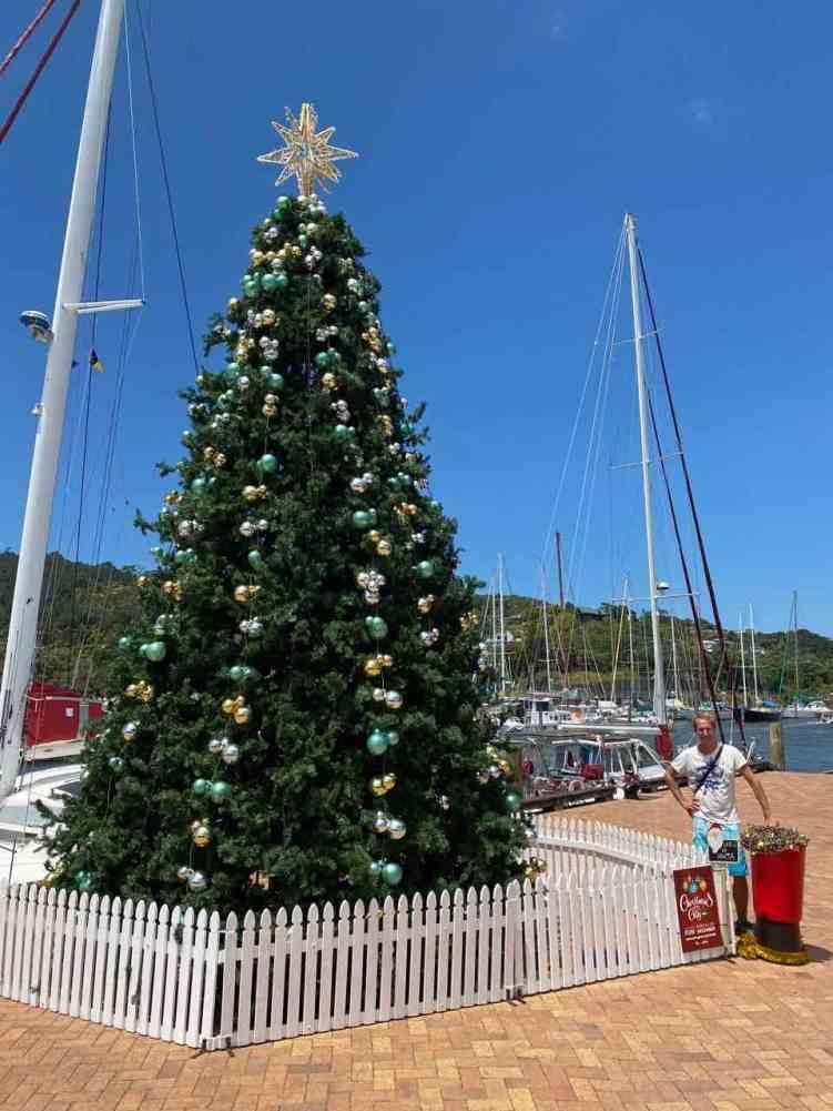 Midsummer Christmas Tree in Whangarei