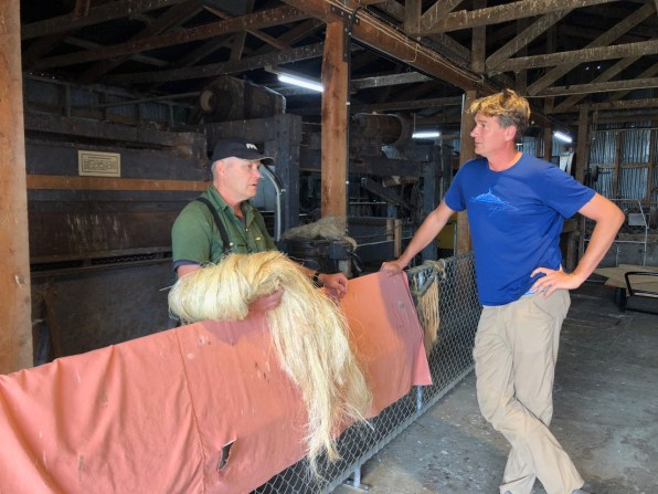 Vaughan shows us his milled flax fibres