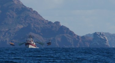 Sonora Shrimp Trawler