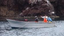 Hooka divers