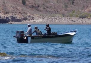 panga divers