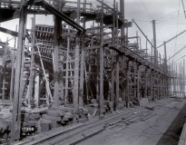 Photo: Tyne & Wear Archives & Museums #467285