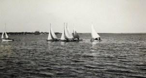 The snipe fleet racing in Charlottetown Harbour