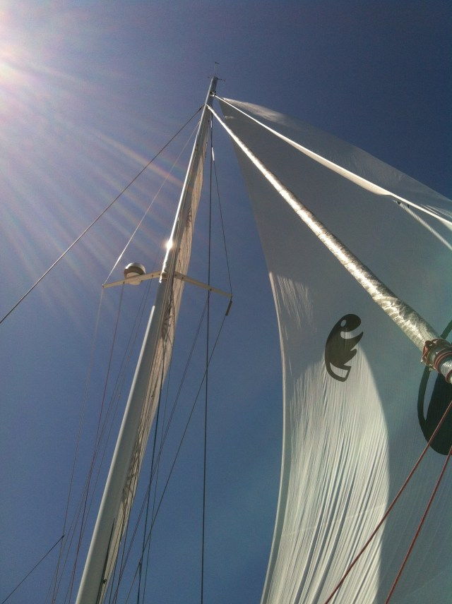 Outremer 5X under sail with carbon fiber mast rotated