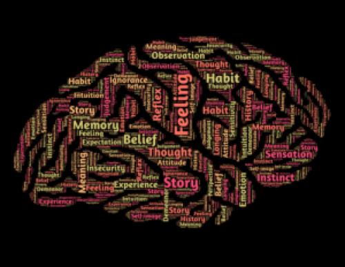 hypnose cerveau