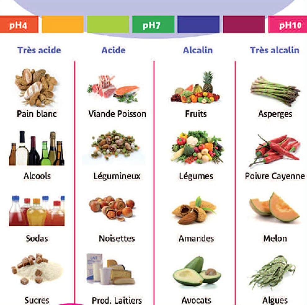 meilleurs aliments