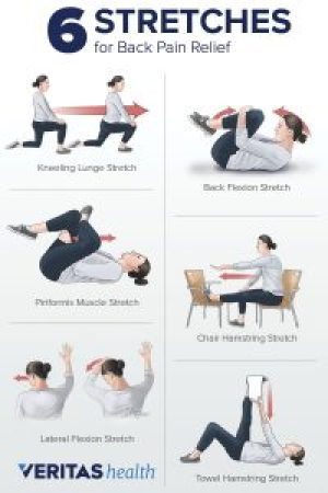 Stretches for Back Pain Relief Sainato Chiropractic