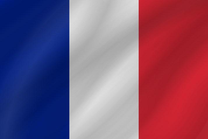 france-flag-wave-medium