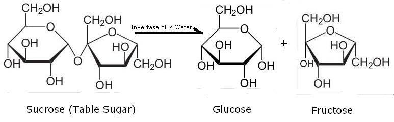 Ilmu Kimia Di Balik Gula Tebu