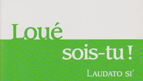 Laudato Si, Loué Sois-tu, 5ème année