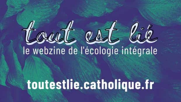 Webzine de l'écologie intégrale