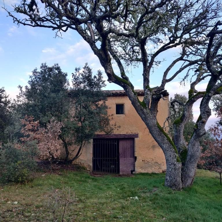 La Porquetièren ancienne bergerie du Domaine Saint-Antonin après réparation - Janvier 2020